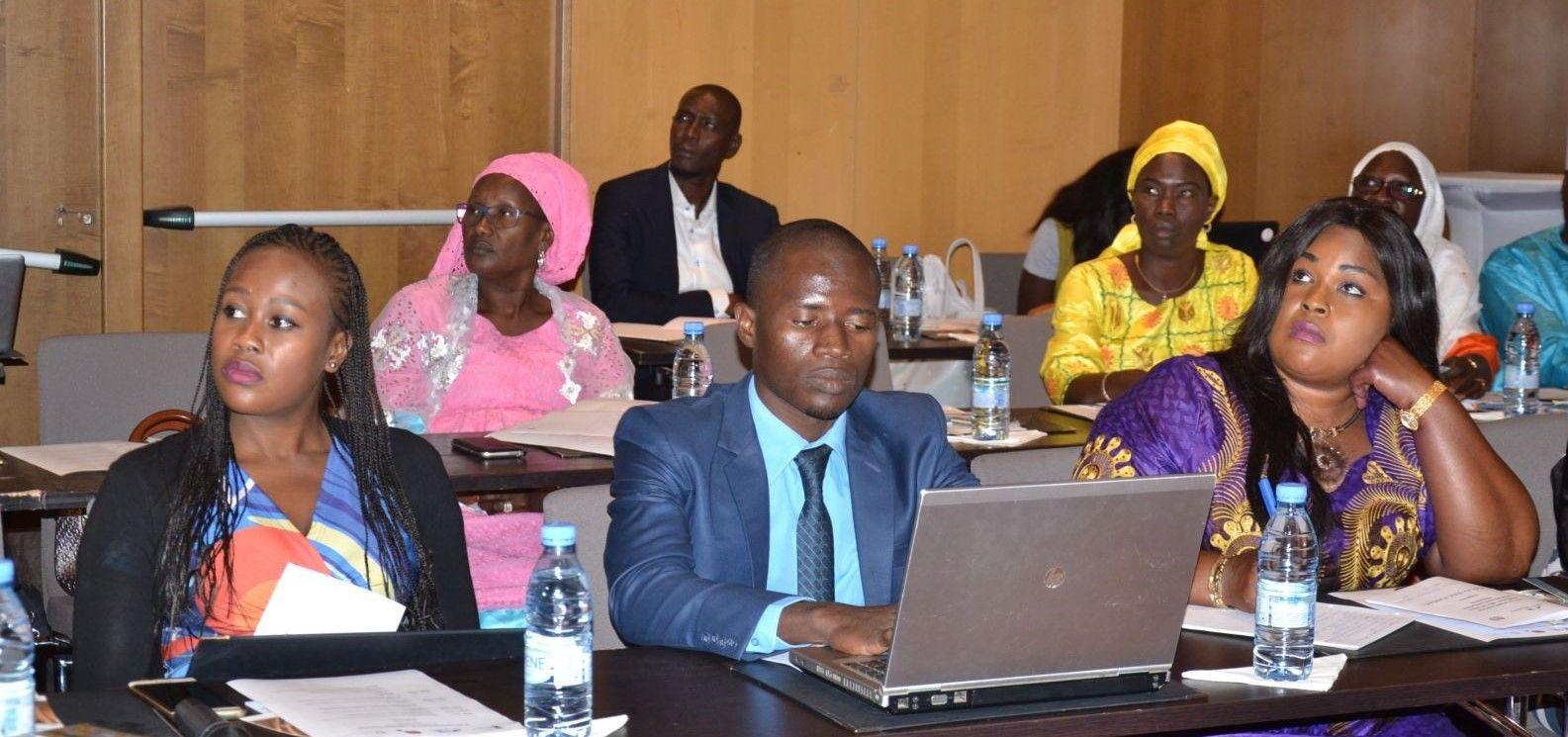 Regional_Workshop_Africa_cropped.jpg